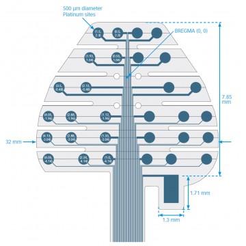 EEGrid-blog-image